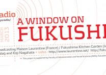 Une fenêtre sur Fukushima, 11 mars 2013