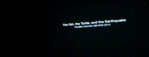 thegirl-the-turtle-aurelie-lierman